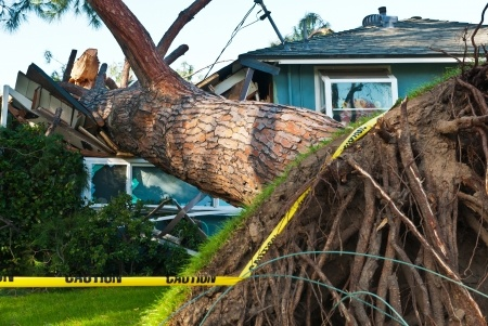 Handling Partial Denials of Roof Claims in Florida